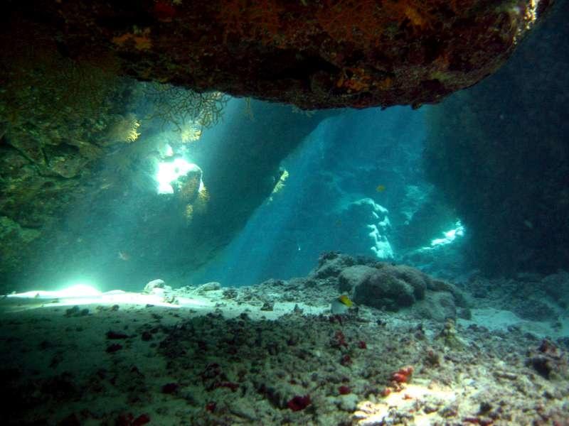 Tauchplatz Shaab Claudio 196 Gypten Rotes Meer